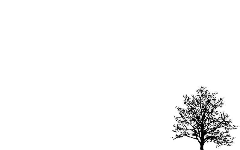 Background đơn sắc đơn giản