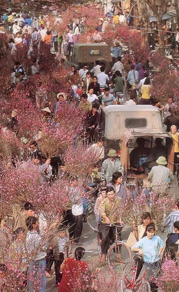 Hình ảnh chợ hoa ngày Tết ở Hà Nội những năm bao cấp