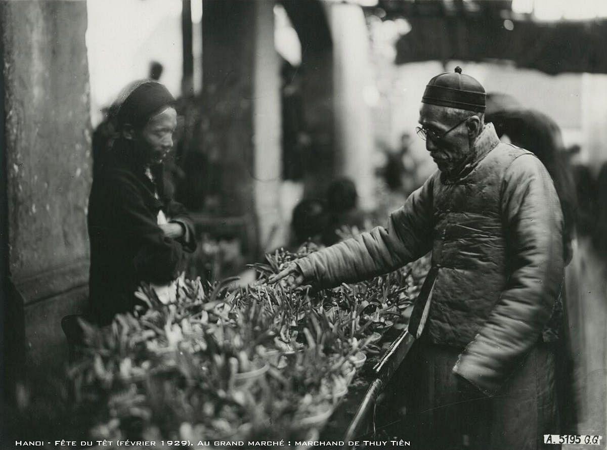 Hình ảnh chợ hoa Tết xưa ở Hà Nội