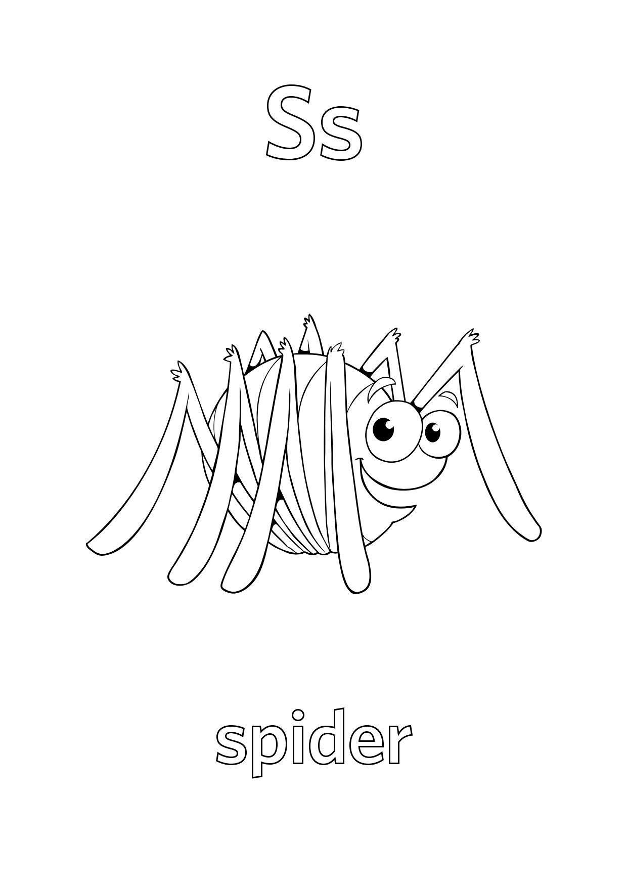 Tranh tô màu chữ S con nhện