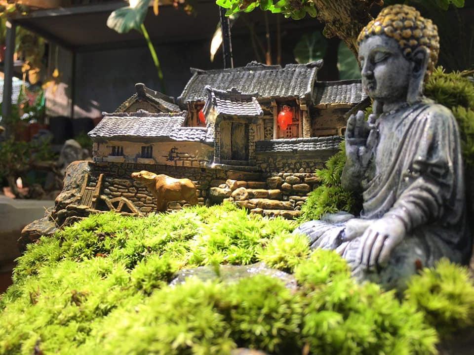 Hình ảnh tiểu cảnh sân vườn mini với tượng Phật